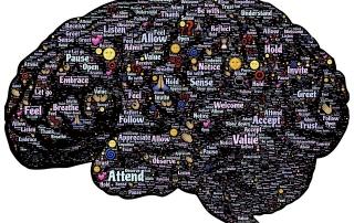 brain-744180_960_720