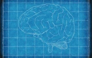 brain-1845941_960_720