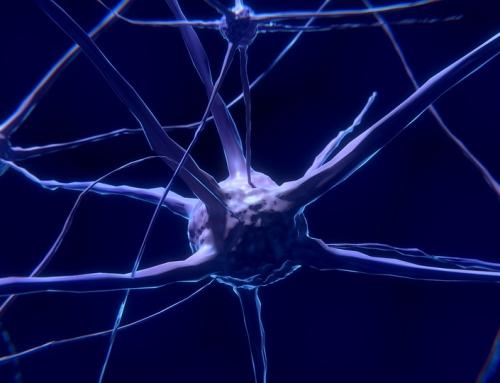 What Is Neurofeedback?