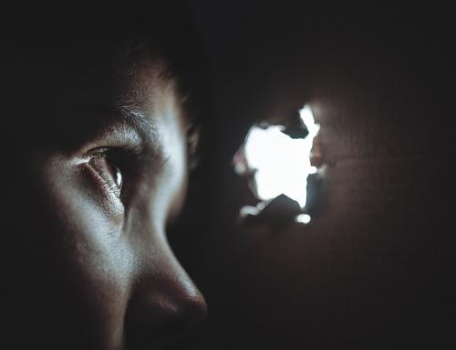 Brain Training Can Help Fight Phobias